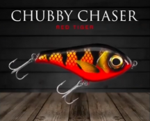 chubby-red-tiger